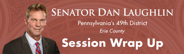 Senator Dan Laughlin E-Newsletter